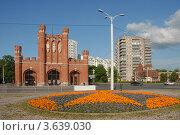 Купить «Королевские ворота», эксклюзивное фото № 3639030, снято 1 июля 2012 г. (c) Svet / Фотобанк Лори