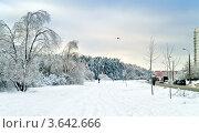 Купить «Зимний пейзаж», фото № 3642666, снято 4 января 2011 г. (c) Parmenov Pavel / Фотобанк Лори