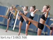 Купить «Художественная гимнастика, тренировка», эксклюзивное фото № 3663166, снято 10 июля 2012 г. (c) Дмитрий Неумоин / Фотобанк Лори