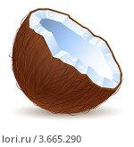 Купить «Половина кокоса», иллюстрация № 3665290 (c) Dvarg / Фотобанк Лори