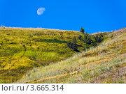 Дневная луна. Стоковое фото, фотограф Владимир Федечкин / Фотобанк Лори