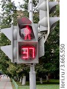 Купить «Светофор», фото № 3665550, снято 13 июля 2012 г. (c) Илюхина Наталья / Фотобанк Лори