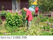 Купить «Мужчина косит траву электрическим триммером», эксклюзивное фото № 3666106, снято 24 июня 2012 г. (c) Алёшина Оксана / Фотобанк Лори