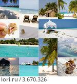 Купить «Коллаж: отдых на тропическом курорте (Мальдивские острова)», фото № 3670326, снято 20 ноября 2018 г. (c) SummeRain / Фотобанк Лори
