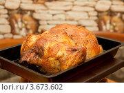 Жареная курица на противне. Стоковое фото, фотограф Александр Бурштын / Фотобанк Лори