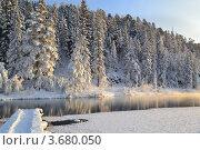Не замерзающие ключи в Сибири. Стоковое фото, фотограф Юлия Науменко / Фотобанк Лори