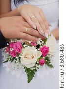 Букет невесты. Стоковое фото, фотограф Василий / Фотобанк Лори