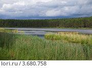 Купить «Заводи озера Селигер», эксклюзивное фото № 3680758, снято 24 июня 2012 г. (c) Елена Коромыслова / Фотобанк Лори