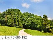 Купить «Сочи, дендрарий, тропический парк», фото № 3686182, снято 8 июля 2012 г. (c) Анна Мартынова / Фотобанк Лори