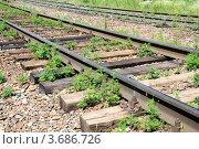 Купить «Заброшенная железная дорога», фото № 3686726, снято 20 июля 2012 г. (c) Валерий Шилов / Фотобанк Лори