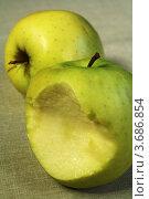 Купить «Зеленые яблоки», фото № 3686854, снято 1 мая 2010 г. (c) Александр Скопинцев / Фотобанк Лори