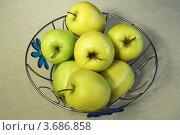Купить «Зеленые яблоки», фото № 3686858, снято 1 мая 2010 г. (c) Александр Скопинцев / Фотобанк Лори