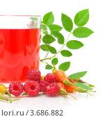 Купить «Чай с шиповником и малиной», фото № 3686882, снято 22 июля 2012 г. (c) Ласточкин Евгений / Фотобанк Лори