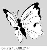 Купить «Векторный силуэт бабочки на сером фоне», иллюстрация № 3688214 (c) Сергей Яковлев / Фотобанк Лори