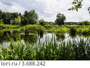 Река. Стоковое фото, фотограф Андрей Корж / Фотобанк Лори