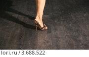 Купить «Ноги танцующей девушки  в туфлях на каблуках», видеоролик № 3688522, снято 15 марта 2010 г. (c) Losevsky Pavel / Фотобанк Лори