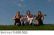 Купить «Музыканты играют на струнных инструментах и сидят на траве», видеоролик № 3690502, снято 2 апреля 2010 г. (c) Losevsky Pavel / Фотобанк Лори