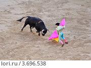 Испанская коррида (2011 год). Стоковое фото, фотограф Артур Даминов / Фотобанк Лори