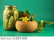 Купить «Банки с солеными огурцами», фото № 3697430, снято 19 июля 2007 г. (c) Елена Блохина / Фотобанк Лори