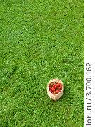Фон из лужайки и корзины с клубникой. Стоковое фото, фотограф Андрей Небукин / Фотобанк Лори