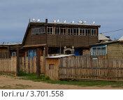 Купить «Остров Ольхон (август 2011г.)», фото № 3701558, снято 23 августа 2011 г. (c) Вита Лукина / Фотобанк Лори