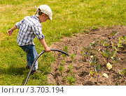 Мальчик поливает растения из садового шланга. Стоковое фото, фотограф Константин Примачук / Фотобанк Лори