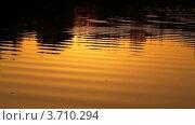 Купить «Отражение лучей солнца в воде на закате», видеоролик № 3710294, снято 21 декабря 2010 г. (c) Losevsky Pavel / Фотобанк Лори