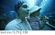 Купить «Женщина с дочерью в океанариуме», видеоролик № 3712130, снято 16 ноября 2010 г. (c) Losevsky Pavel / Фотобанк Лори