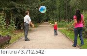 Купить «Семья играет с мячом в парке», видеоролик № 3712542, снято 28 октября 2010 г. (c) Losevsky Pavel / Фотобанк Лори