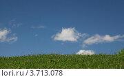 Купить «Облака бегут по голубому небу над полем, таймлапс», видеоролик № 3713078, снято 24 августа 2010 г. (c) Losevsky Pavel / Фотобанк Лори