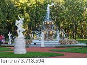 Купить «Санкт-Петербург. Летний сад», эксклюзивное фото № 3718594, снято 2 августа 2012 г. (c) Литвяк Игорь / Фотобанк Лори