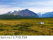 Алтайские вершины. Стоковое фото, фотограф Тимур Кузяев / Фотобанк Лори