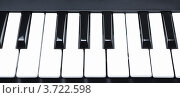Купить «Черные и белые клавиши», фото № 3722598, снято 7 июля 2012 г. (c) Петр Малышев / Фотобанк Лори