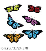 Купить «Разноцветные бабочки», иллюстрация № 3724578 (c) Анна Павлова / Фотобанк Лори