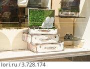 Купить «Витрина магазина», эксклюзивное фото № 3728174, снято 25 июля 2012 г. (c) Алёшина Оксана / Фотобанк Лори