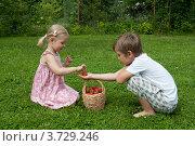 Мальчик угощает девочку спелой клубникой. Стоковое фото, фотограф Андрей Небукин / Фотобанк Лори