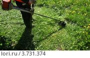 Купить «Рабочий косит траву», видеоролик № 3731374, снято 7 апреля 2011 г. (c) Losevsky Pavel / Фотобанк Лори