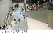 Купить «Люди двигаются на эскалаторах в зале», видеоролик № 3731574, снято 9 апреля 2011 г. (c) Losevsky Pavel / Фотобанк Лори