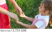 Купить «Мама и девочка держатся за руки на прогулке в летнем парке», видеоролик № 3731698, снято 7 января 2011 г. (c) Losevsky Pavel / Фотобанк Лори