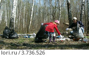Купить «Папа с детьми убирает мусор в лесу, таймлапс», видеоролик № 3736526, снято 6 июля 2011 г. (c) Losevsky Pavel / Фотобанк Лори
