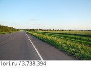 Асфальтовая дорога и зеленое поле рядом. Стоковое фото, фотограф Александр Довянский / Фотобанк Лори