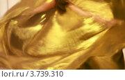 Купить «Девушка танцует танец живота крупным планом», видеоролик № 3739310, снято 8 августа 2011 г. (c) Losevsky Pavel / Фотобанк Лори