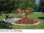 Купить «Цветочное панно в парке города Одинцово. Московская область», эксклюзивное фото № 3739962, снято 4 июля 2012 г. (c) lana1501 / Фотобанк Лори
