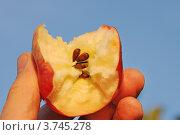 Купить «Откусанное яблоко в руке», эксклюзивное фото № 3745278, снято 12 августа 2012 г. (c) Юрий Морозов / Фотобанк Лори