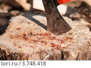Лезвие топора в колоде вокруг пятна крови и перья. Стоковое фото, фотограф Яна Шпакова / Фотобанк Лори