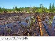Купить «Последствия аварии на нефтепроводе», фото № 3749246, снято 12 августа 2012 г. (c) Икан Леонид / Фотобанк Лори