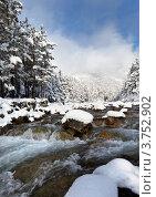 Горная река и заснеженный лес. Стоковое фото, фотограф Виктория Катьянова / Фотобанк Лори