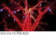 Купить «Дерево, украшенное разноцветными лампочками, на фоне автомобильной дороги», видеоролик № 3756822, снято 12 ноября 2011 г. (c) Losevsky Pavel / Фотобанк Лори
