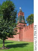Купить «Благовещенская башня Московского Кремля», эксклюзивное фото № 3759774, снято 3 августа 2012 г. (c) Елена Коромыслова / Фотобанк Лори