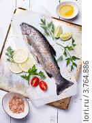 Купить «Форель свежая с приправами», фото № 3764886, снято 10 августа 2012 г. (c) Лисовская Наталья / Фотобанк Лори